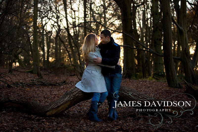 gosfield hall engagements